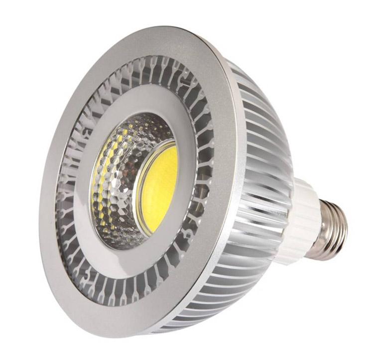 LED COB Par30 Par38